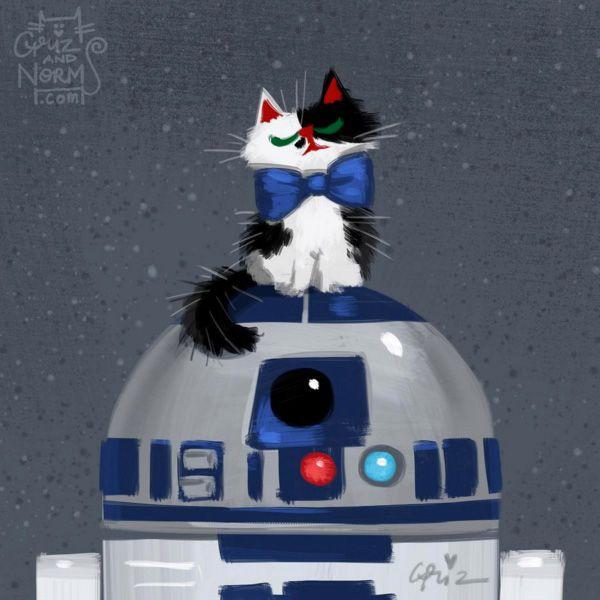 Star Wars Cats by GritzandNorm5, Star Wars Cats by GritzandNorm1, Star Wars, kitties, The Force Awakens, fan art, GrizandNorm, BB-8, cosplay