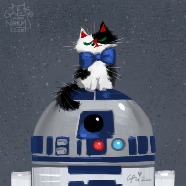Star Wars Cats by GritzandNorm5, Star Wars Cats by GritzandNorm1, Star Wars, kitties, The Force Awakens, fan art, GrizandNorm, BB-8, cosplay