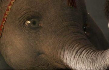 Disney Drops New 'Dumbo' (2019) Trailer